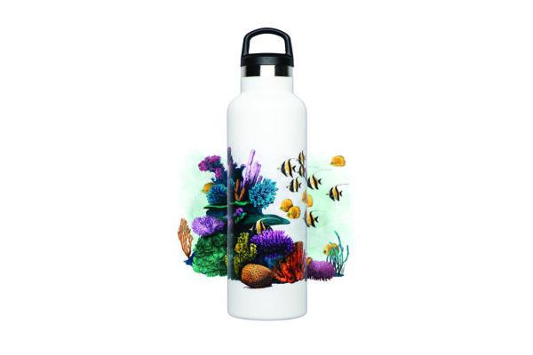 Anfibius Botella Reutilizable